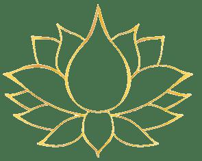 lotus o coeur de la vie