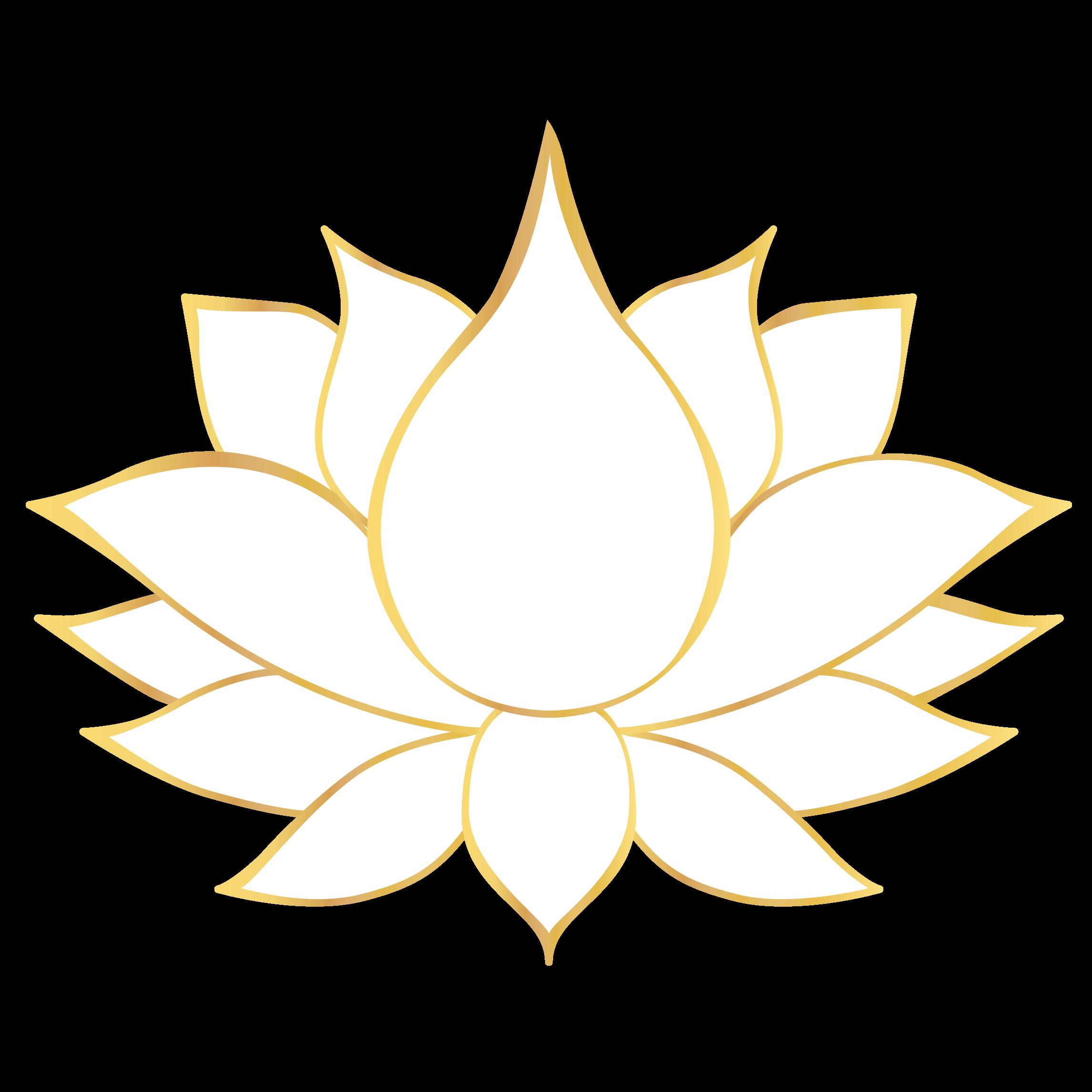 grand lotus o coeur de la vie
